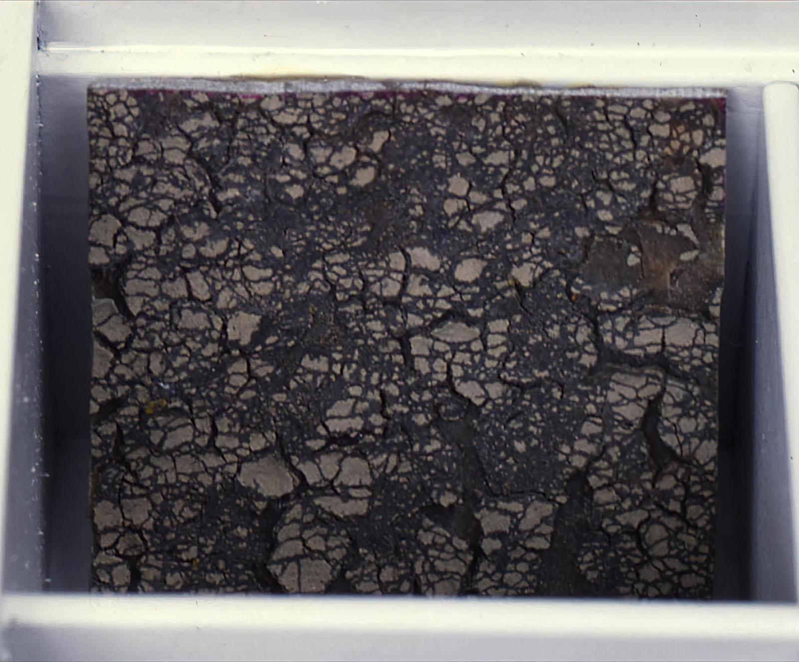 Mark Boyle - Cracked Earth