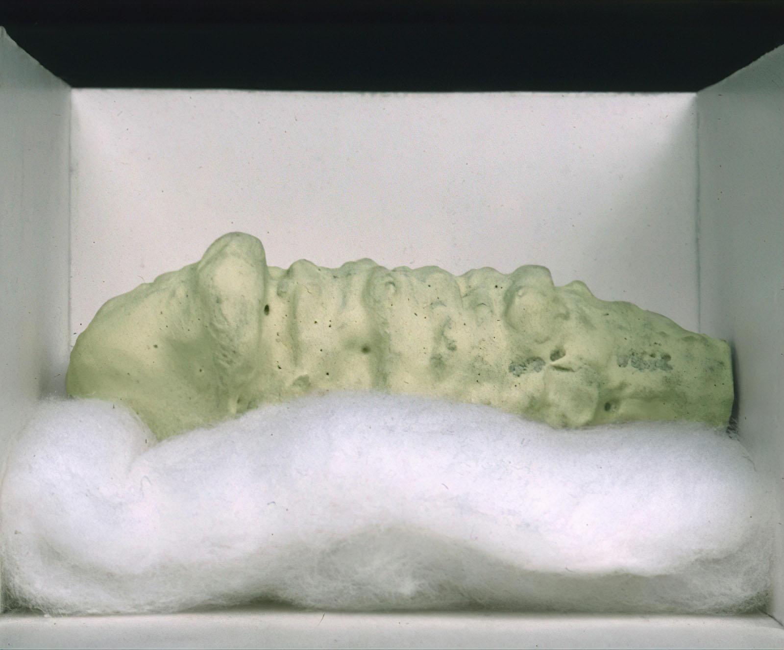 Tetsumi Kudo - Fossil in Hiroshima